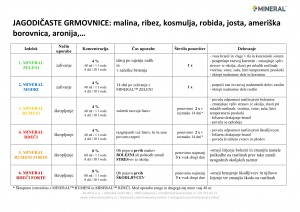 mineral-program_2018-jagodicaste_grmovnice