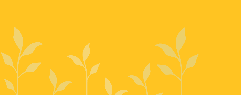 yellow_half_c