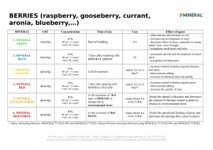 Program for use - Berries 2019-1