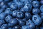 berries_3