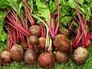 root_veg_3