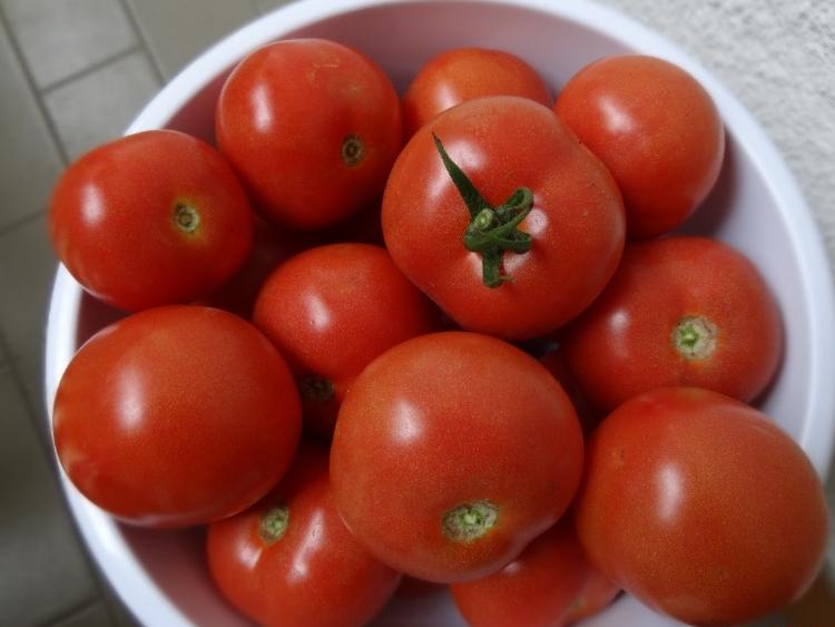 paradajz8